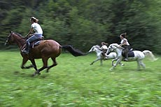 equitazione e attività sportive a les deux alpes
