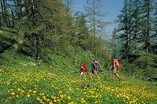passeggiate e attività sportive a les deux alpes